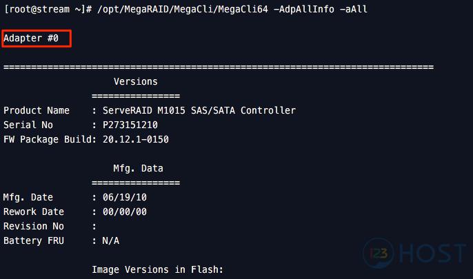 Hướng dẫn kiểm tra thông tin Hardware RAID LSI trên server
